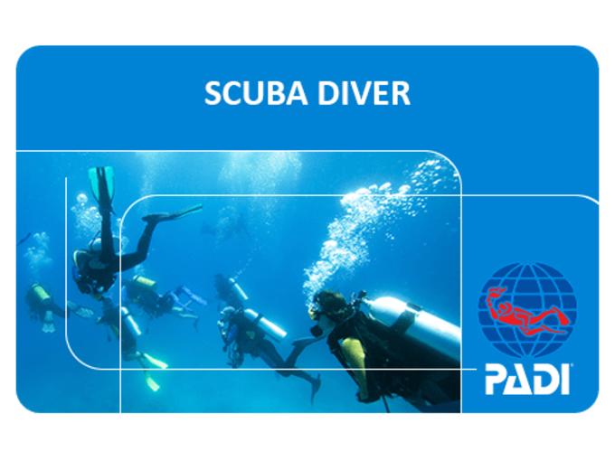 Padi Scuba Diver Course Anthias Divers